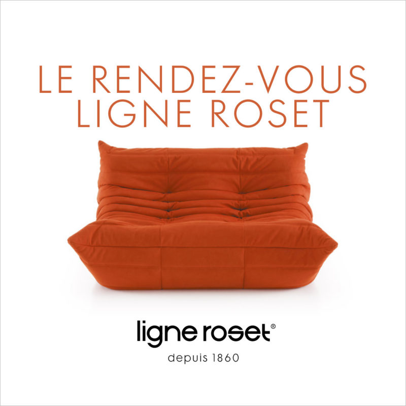 Ligne Roset Hamburg MULTY Sofa